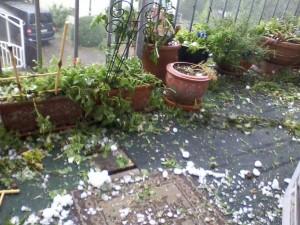 Zerstörte Balkonblumen nach Hagelsturm am 28.07.2013