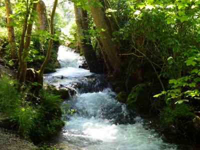 Wasser als Quell des Lebens - Brühlbach / Bad Urach © Bürodienste-in