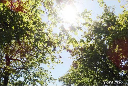 Umweltschonend Heizen Sonnenergie